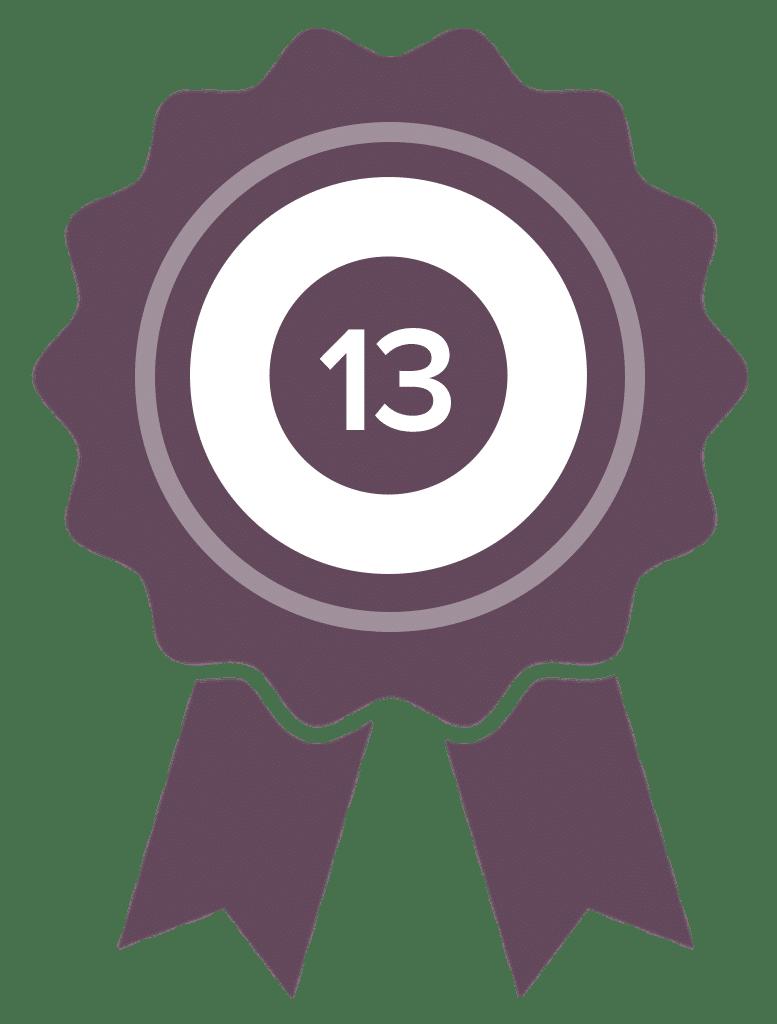 badgev13